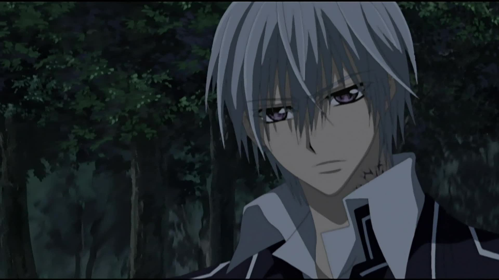 Anime Characters Vampire : Vampire knight the complete collection review otaku