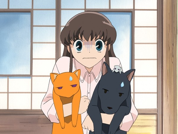 Tohru With Three Members Of The Sohma Family In Animal Form THE GOOD Fruits Baskets